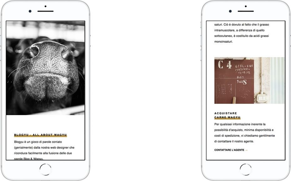 Website designed for Ca'Negra mocked up in iPhone